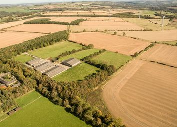 Thumbnail Land for sale in Highfield Farm Estate, Near Whittonstall, Northumberland