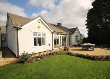 Thumbnail 4 bed detached bungalow for sale in Hardstoft Road, Pilsley, Chesterfield