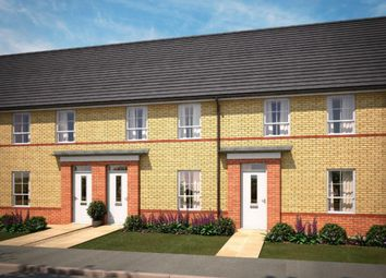 "Thumbnail 3 bed semi-detached house for sale in ""Finchley"" at Warkton Lane, Barton Seagrave, Kettering"