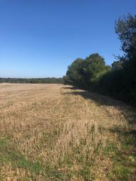 Thumbnail Land for sale in Wield Road, Medstead, Hampshire