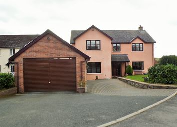 Thumbnail 4 bed detached house for sale in Lake View Close, Llangorse, Brecon