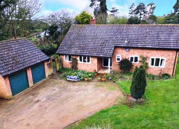 Thumbnail 3 bed detached bungalow for sale in The Street, Eyke, Woodbridge