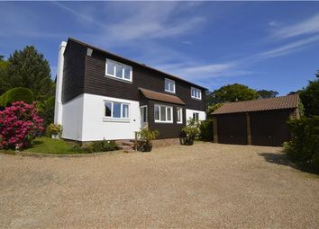 Thumbnail 4 bed detached house for sale in Old House Gardens, Hastings, East Sussex