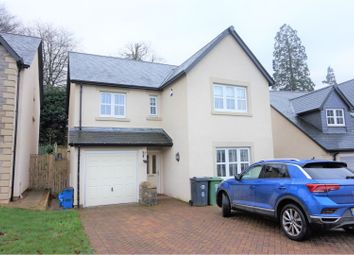 Thumbnail 4 bed detached house to rent in Beechnut Road, Kendal
