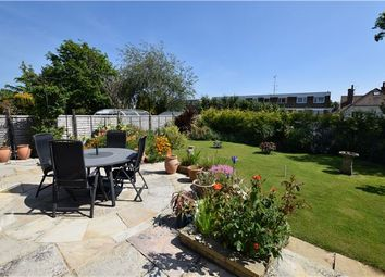 Thumbnail 3 bed detached house for sale in Terminus Avenue, Bexhill-On-Sea