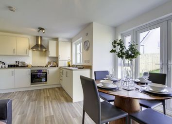 "Thumbnail 3 bed terraced house for sale in ""Wemyss"" at Salters Road, Wallyford, Musselburgh"