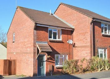 Thumbnail 3 bed semi-detached house to rent in Starkey Close, Tiverton
