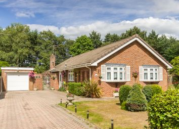 Thumbnail 3 bed detached bungalow for sale in Ashley Heath, Ringwood, Hampshire