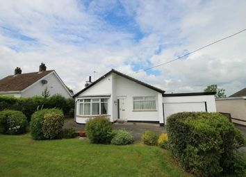 Thumbnail 4 bed detached bungalow to rent in Drumlough Road, Hillsborough