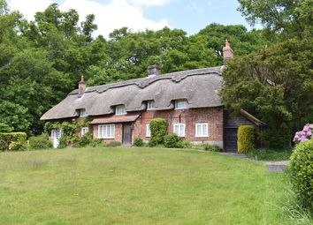 Thumbnail 4 bed equestrian property for sale in Highwood, Ringwood