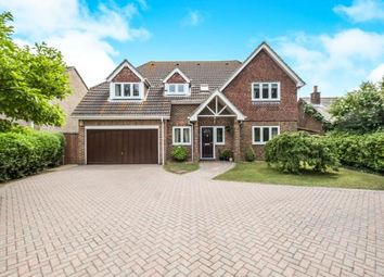 Thumbnail 5 bedroom detached house for sale in Kingsway, Hayling Island
