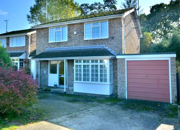 Thumbnail 3 bed detached house for sale in New Place Road, Pulborough