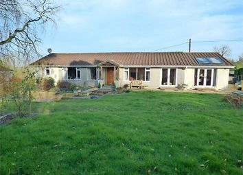 Thumbnail 4 bedroom detached bungalow for sale in Longdown, Exeter, Devon