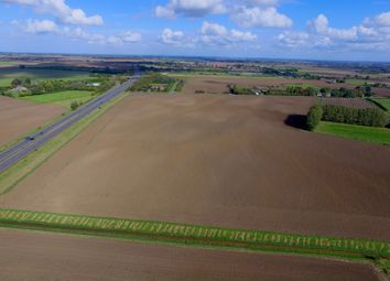 Thumbnail Land for sale in West Drove South, Walpole Highway, Wisbech