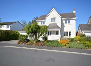 Thumbnail 4 bed detached house for sale in Trinkeld Avenue, Swarthmoor, Cumbria