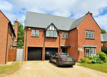 Thumbnail 4 bed detached house to rent in Matchams Close, Matchams, Ringwood