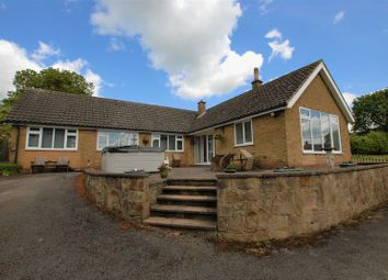 Thumbnail 3 bed detached bungalow for sale in Lower Street, Doveridge, Ashbourne