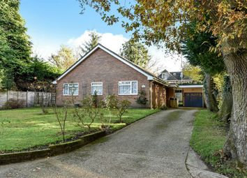 Thumbnail 3 bed detached bungalow for sale in Chapel Gardens, Lindford, Bordon