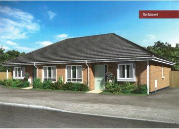 Thumbnail 2 bed semi-detached bungalow for sale in Waingroves Road, Waingroves, Ripley