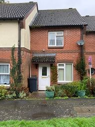 Thumbnail 2 bed terraced house to rent in North Street, Axminster