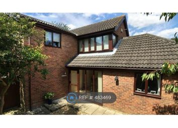 Thumbnail 4 bed detached house to rent in Mill Lane, Carbrooke, Thetford