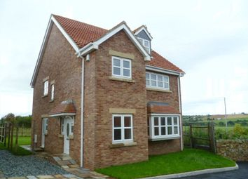 Thumbnail 5 bed detached house to rent in Valley View, Witton Park, Bishop Auckland