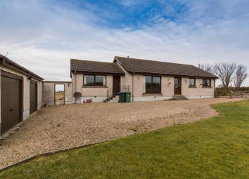 Thumbnail 3 bed bungalow for sale in Achalone, Halkirk, Caithness, Highland