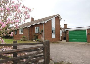 Thumbnail 4 bed detached bungalow for sale in Linton, Croomshill, Ross-On-Wye