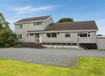 Thumbnail 4 bed detached house for sale in Back Road, Drumbo, Lisburn, County Antrim