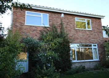 Thumbnail 4 bed detached house to rent in Flint Way, Putnoe, Bedford