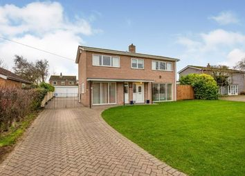 Thumbnail 4 bed detached house for sale in Tacolneston, Norwich, Norfolk