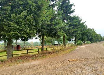 Thumbnail Equestrian property for sale in Basse-Normandie, Manche, Saint James