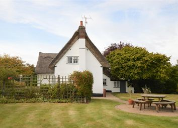 Thumbnail 4 bed detached house for sale in Park Lane, Langham, Colchester