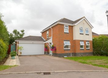 Thumbnail Detached house for sale in Hopton Rise, Haverhill