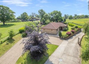 Thumbnail 4 bed bungalow for sale in Featherbed Lane, Warlingham, Surrey