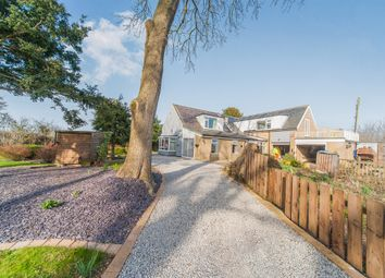 Thumbnail 5 bed detached house for sale in Meaux, Beverley, East Yorkshire