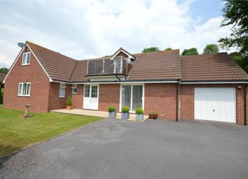 Thumbnail 5 bed detached bungalow for sale in Heathlands Rise, Teignmouth, Devon