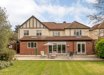 Thumbnail 5 bed detached house for sale in Constitution Hill, Norwich