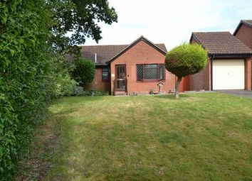 Thumbnail 3 bed detached bungalow to rent in Laurel Road, Honiton