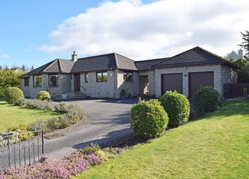 Thumbnail 4 bed detached bungalow for sale in Hollybank, Castleton Road, Auchterarder, Perthshire