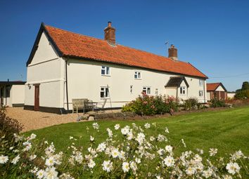 Thumbnail 4 bedroom detached house for sale in Burston Road, Diss