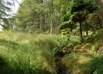 Thumbnail Property for sale in Amenity Woodland Off Holbeck Lane, Troutbeck, Cumbria