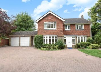 Thumbnail 4 bedroom detached house to rent in Shaftesbury Road, Woking