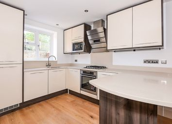 Thumbnail 4 bed end terrace house for sale in Blandfield Road, London