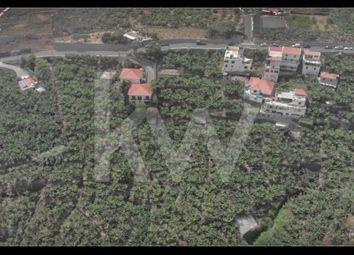 Thumbnail Land for sale in Caminho Quebradas 9000-233 Funchal, São Martinho, Funchal