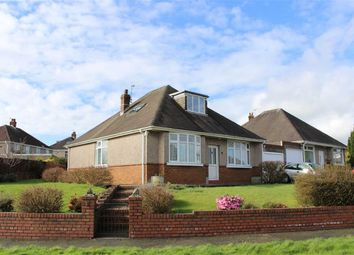 Thumbnail 4 bed detached bungalow for sale in Hendy Close, Derwen Fawr, Sketty