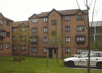 Thumbnail Studio to rent in Wingrove Drive, Purfleet