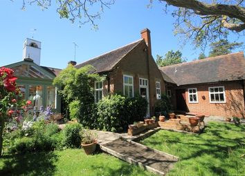 Thumbnail 4 bed bungalow for sale in Norton Road, Norton, Sittingbourne