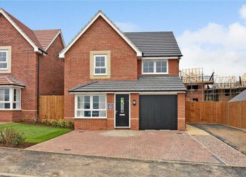 3 bed detached house to rent in Neptune Road, Wellingborough NN8
