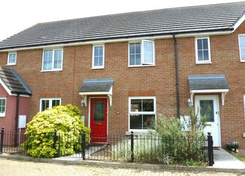 Thumbnail 2 bed property to rent in Caracalla Way, Colchester